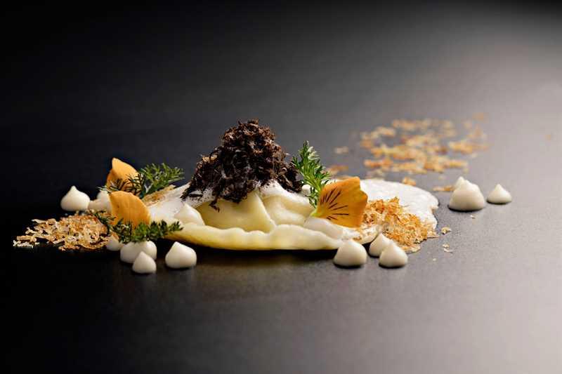 5 star vegan restaurants Zurich