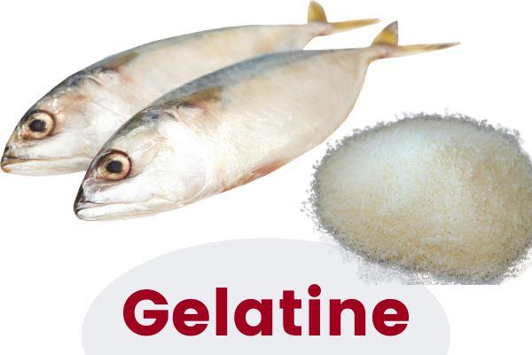 Diet Coke Gelatine Vegan