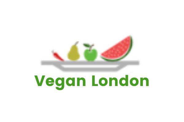 Best Vegan Men's Dress Shoes Vegan London